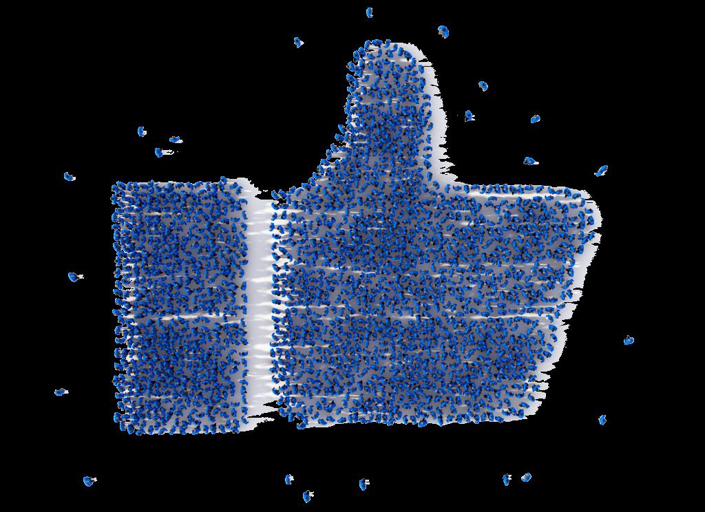 Muenswebit Webdesign Allgäu Facebook Like